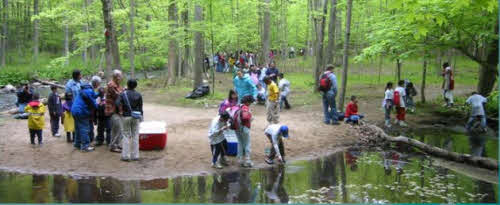Picture of Stream with Students Releasing Trout