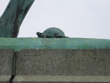 Bronze Statue of a Turtle